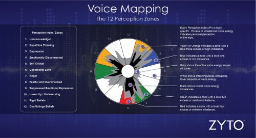 voice-map-12-perception-zones